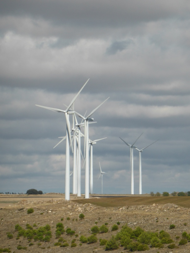 "Energy from wind is really important in Spain. ""Red Eléctrica de España (REE) released a preliminary report on the country's power system ( 2014), revealing that for ""the first time ever, [wind power] contributed most to the annual electricity demand coverage"". According to the figures, wind turbines met 21.1% of electricity demand on the Spanish peninsular, narrowly beating the region's fleet of nuclear reactors, which provided 21% of power."