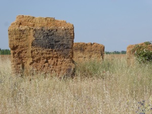 The re intents of a medieval grain storage building made of Adobe
