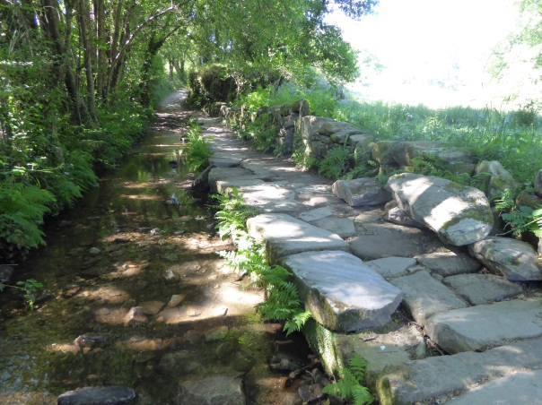 The solution to obstacles along the Camino is not always easy: here, huge stones - I am talking big: up to 3 feet x 1.5 by a foot deep have been placed over almost a hundred yards of river bottom.