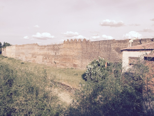A portion of the wall circling the combined Roman and medieval town of Mansilla de las Mulas