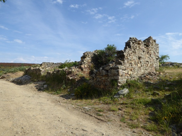 Until the recent resurgence of interest in the Camino ( last year over 225,000 registered to do some portion of it) this area was in economic ruin. These stone walls are all that is left of centuries old buildings.